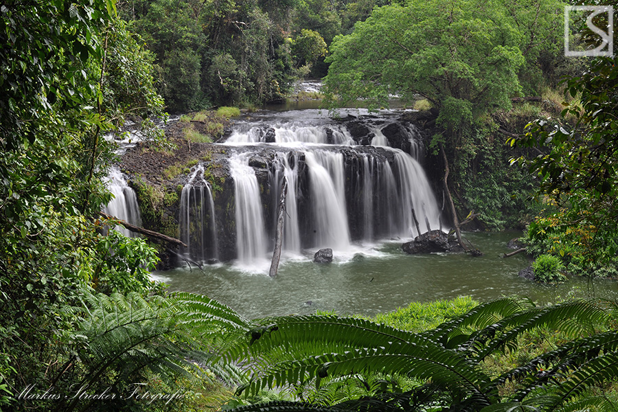 Wallicher Falls Queensland Australien