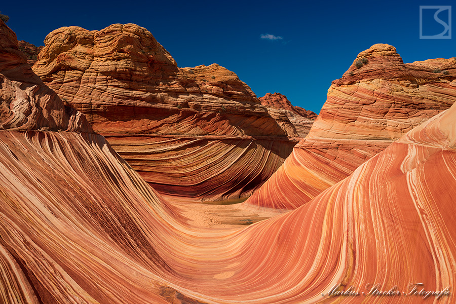 The Wave Coyote Buttes Vermilion Cliffs Wilderness Arizona USA